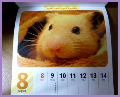 日記12・7カレンダー2