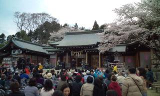 sakurayama2.jpg