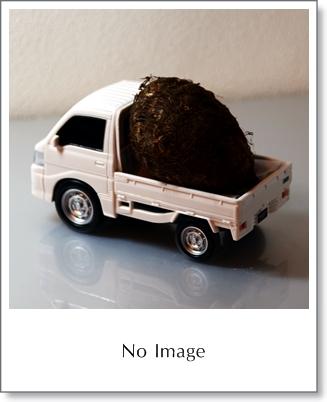 no image03
