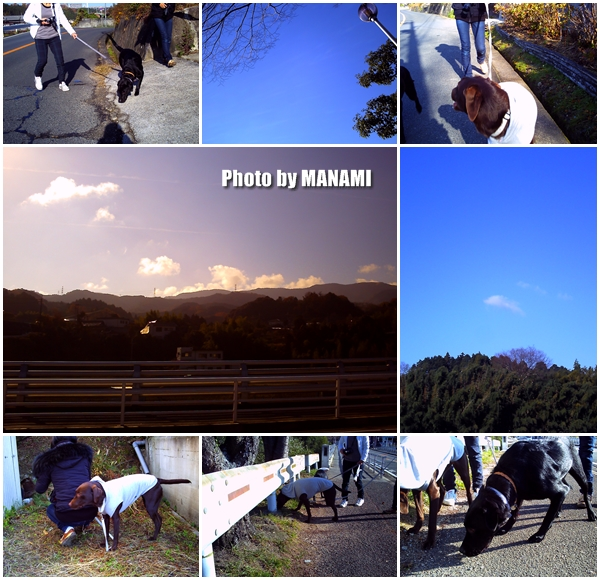 Photo manami