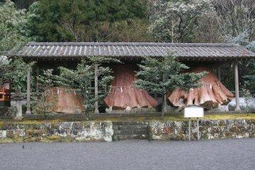 201202_ryokou_19.jpg