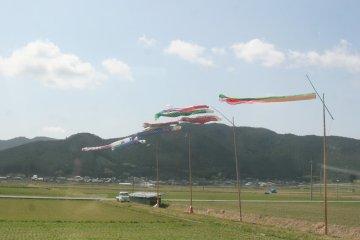 201203uwajima_14.jpg