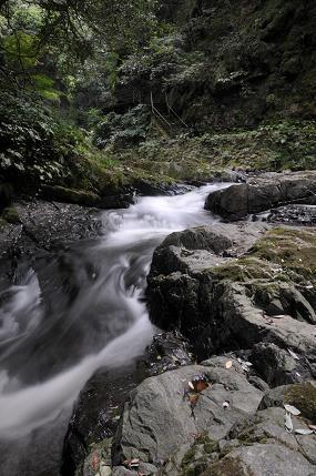 千丈渓 写真3