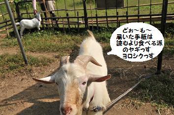 9月11日 富士五湖ドライブ 087