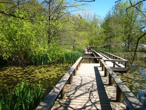バンデューセン植物庭園9