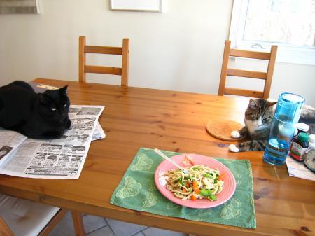テーブル猫2
