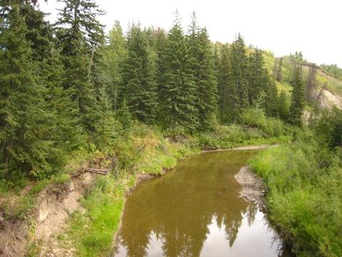 ホワイトマッド自然保護区