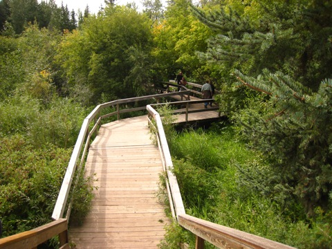ホワイトマッド自然保護区2