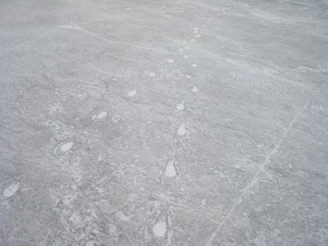 アイススケート3