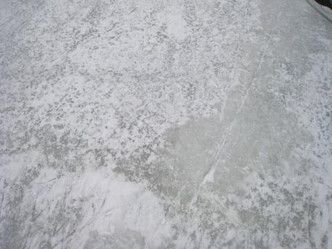 アイススケート12