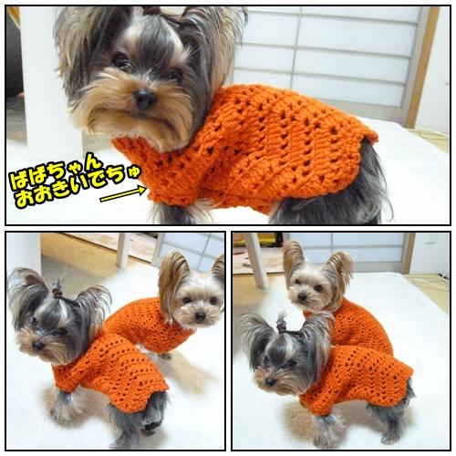 オレンジセーター