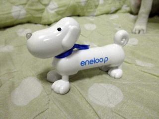 eneloopy1