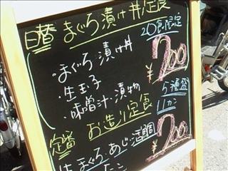 201103281235.jpg