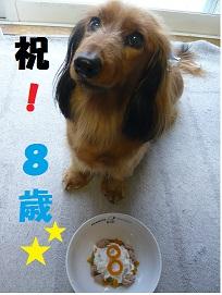 8歳・誕生日!