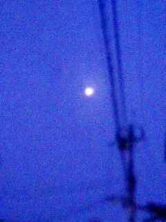 居待月 夜明け 091105_0601~001
