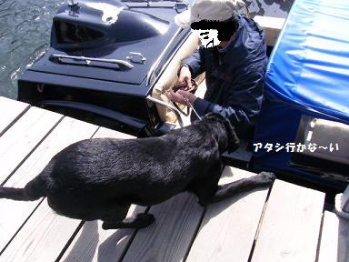 こんなん乗られへんわ~!!