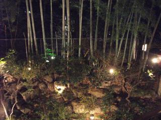 金の猿夜景