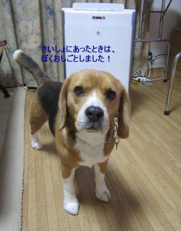 IMG_0021_20120331011231.jpg