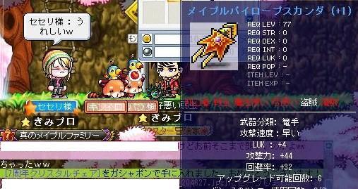 Maple100928_204639.jpg