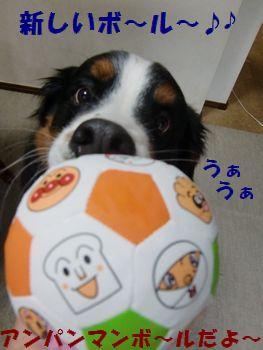 僕のボール~!!あんぱんまんなの~!!