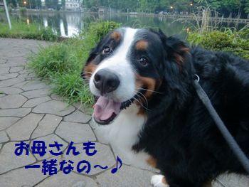 一緒お散歩なの~!!