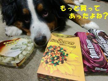 チョコいっぱい~♪