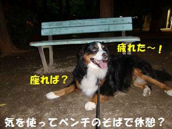 ベンチがあるから座ってなよ~。