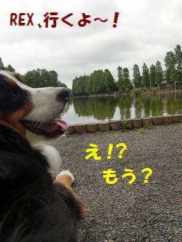 え~!休憩ちょっぴし!?