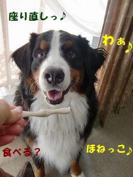 よだれでちゃう~!!