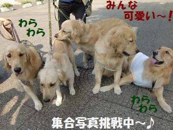 集合写真撮るの難しい~!!