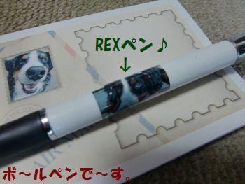 REXペン??
