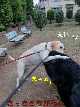 首を狙われる~!!