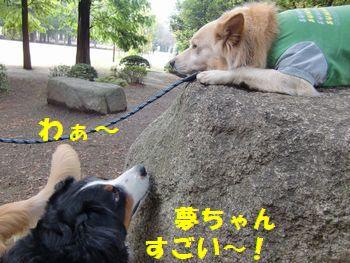 夢ちゃんすごいねっ!!