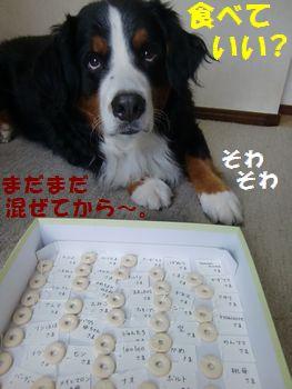 全部食べてい~の!?い~のね!?
