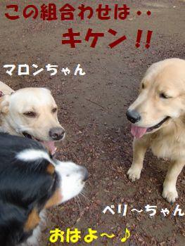 さっそく遊ぼう~!!