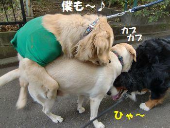なんか重いよ~!!