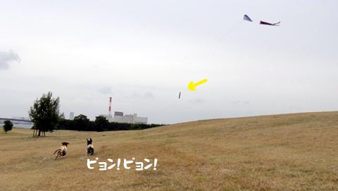 201019.jpg
