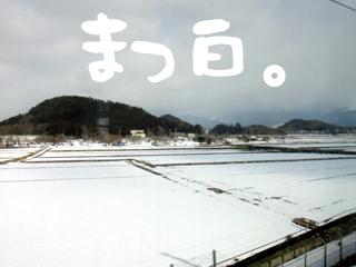 201202204.jpg