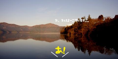 201202211.jpg
