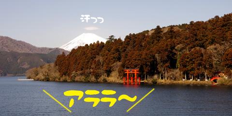 2012022115.jpg