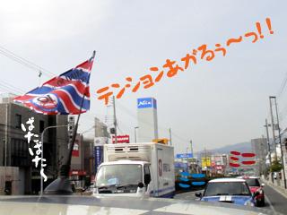 201203206.jpg