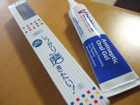 歯磨き道具
