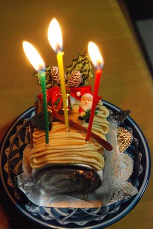 ワンコクリスマスケーキ