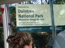 rainforest tour (2)