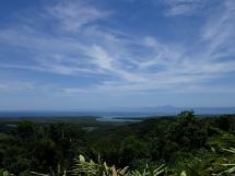 rainforest tour (15)
