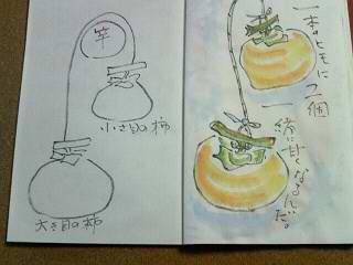 hosigaki 004