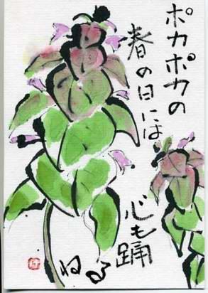 himeodorikosou566.jpg