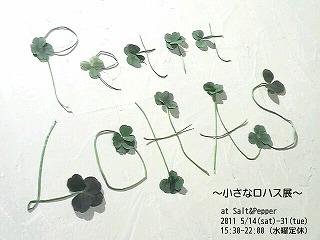 P1106994_20110513183707.jpg