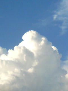2010.08.08 nyuudougumo-1