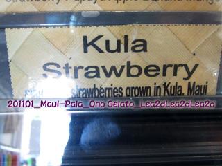 2011年1月 Maui-Paia_Ono Gelato Company